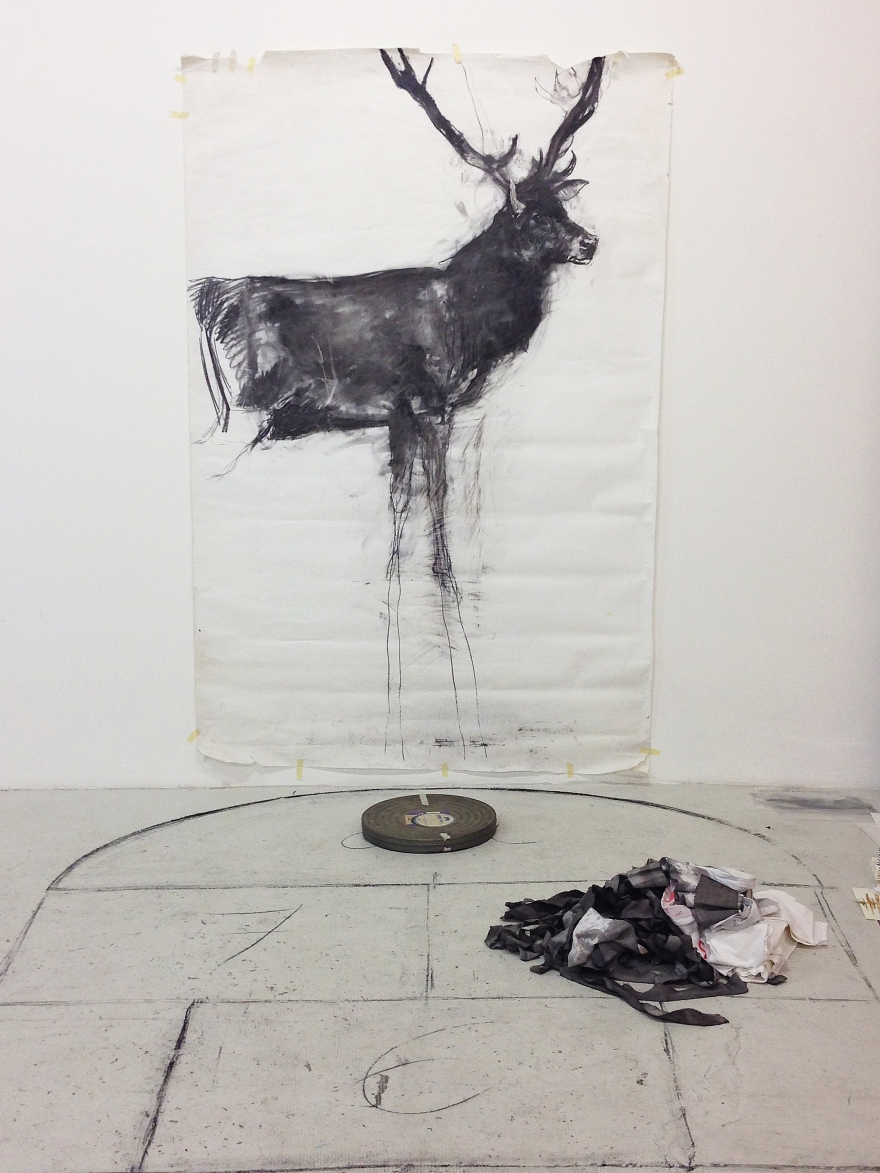 marijo foehrle- cerf- installation dessins- château de servières- OAA 2018